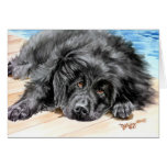 """Newfoundland """"Patience"""" Greeting Card"""