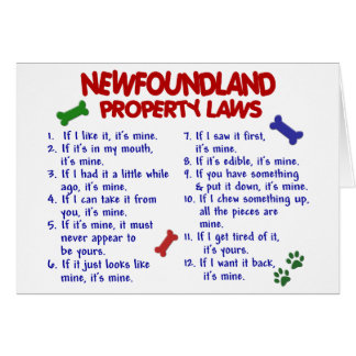NEWFOUNDLAND Property Laws 2 Card