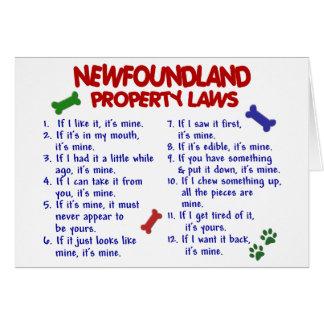 NEWFOUNDLAND Property Laws 2 Card
