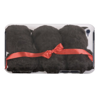 Newfoundland Puppies sleeping (Canis iPod Touch Case-Mate Case