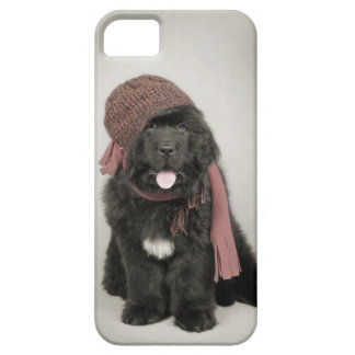 Newfoundland puppy case for the iPhone 5