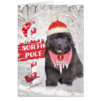 Newfoundland Puppy Loves Santa Card