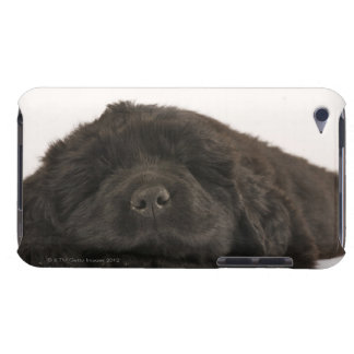 Newfoundland Puppy sleeping (Canis familiaris). iPod Touch Case-Mate Case