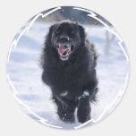 Newfoundland Running Sticker