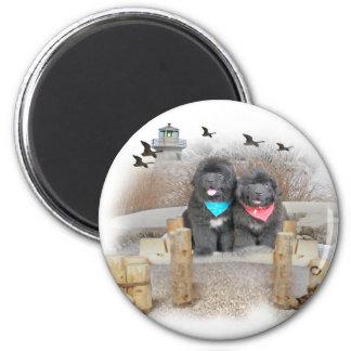 Newfoundland seashore 6 cm round magnet