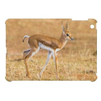 Newly Born Springbok (Antidorcas Marsupialis) iPad Mini Case