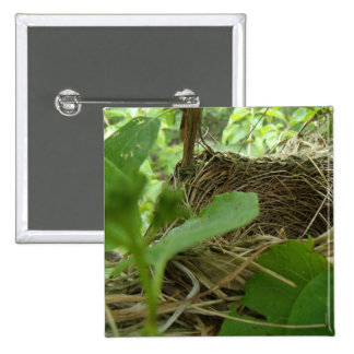 Newly Built but Empty Bird Nest in a Mulberry Tree 15 Cm Square Badge