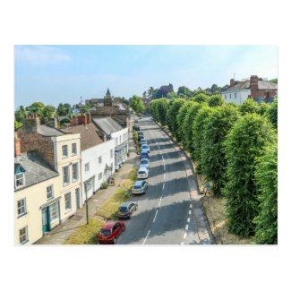 Newnham Postcard