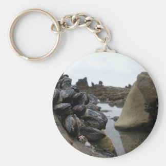 Newport Beach at low tide Basic Round Button Key Ring