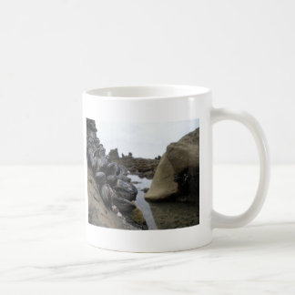 Newport Beach at low tide Coffee Mugs