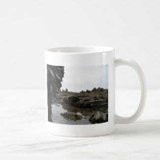 Newport Beach Mugs