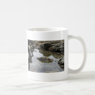 Newport Beach Rocks and Muscles Mug