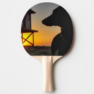Newport Beach Sunset Ping Pong Paddle