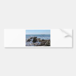 newport ocean cliffs bumper sticker