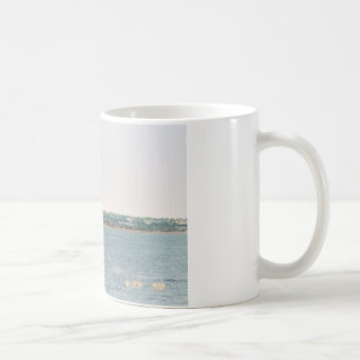 Newport shoreline mug