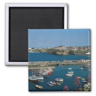 Newquay harbor Cornwall U K Refrigerator Magnet