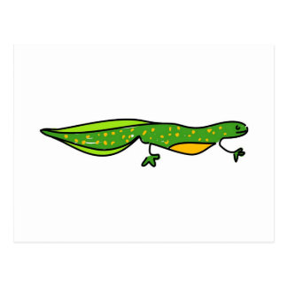 newt postcard