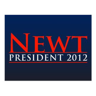 Newt President 2012 Post Card