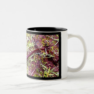 Newt Two-Tone Coffee Mug