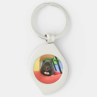 Newton Goes For a Drive Key Ring