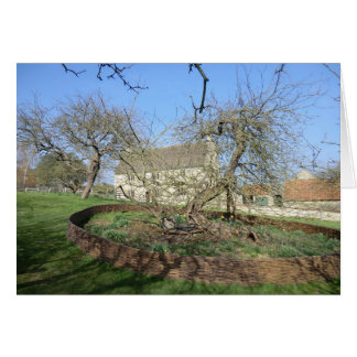 Newton's Tree at Woolthorpe Manor Card