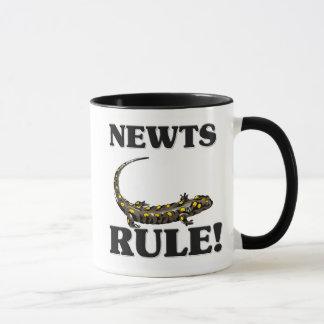 NEWTS Rule! Mug
