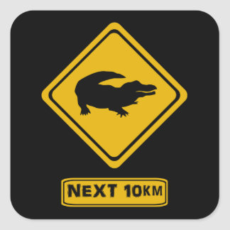 next 10 km crocodiles square sticker