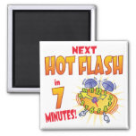 Next Hot Flash Refrigerator Magnet