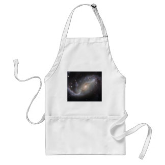 NGC 1672 Barred Spiral Galaxy Standard Apron
