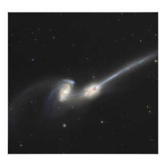 NGC 4676, also known as the Mice Galaxies Photographic Print