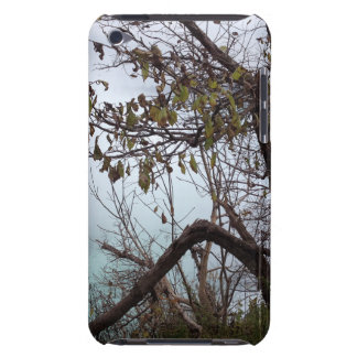 Niagara Falls iPod Touch 4 Case Case-Mate iPod Touch Case