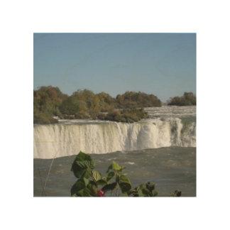 Niagara Falls Wood Canvases