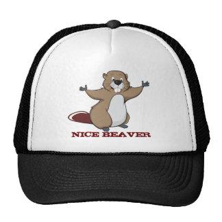NICE BEAVER CAP
