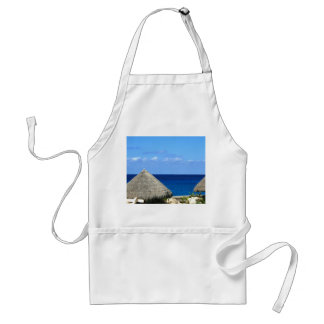 Nice Blue Ocean and Sky in Progresso Mexico Standard Apron