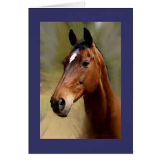 nice friendly horses greeting card