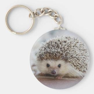 Nice hedgehog photo key ring