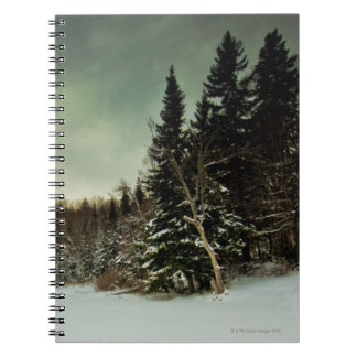 Nice hike over frozen lake in state of Vermont Spiral Notebook