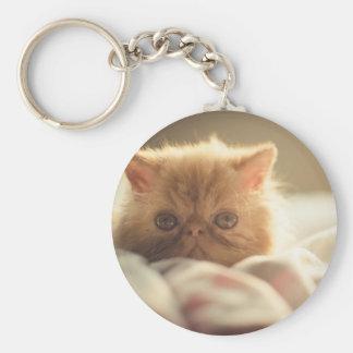 Nice kitty stay warm key ring