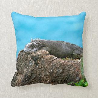 Nice Looking Iguana of St. Thomas U.S.V.I Cushion