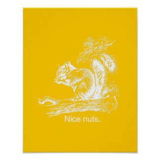 NICE NUTS - WHITE - png Posters