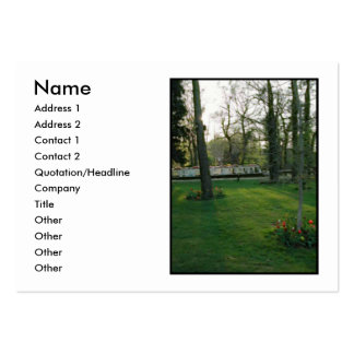 Nice scene with Narrowboat. Pack Of Chubby Business Cards
