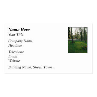 Nice scene with Narrowboat. Pack Of Standard Business Cards