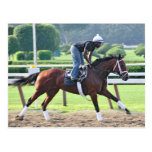 Nick Bush and Todd Pletcher Workouts Postcard