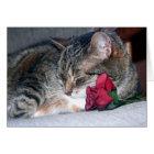 Nicky & A Rose Card