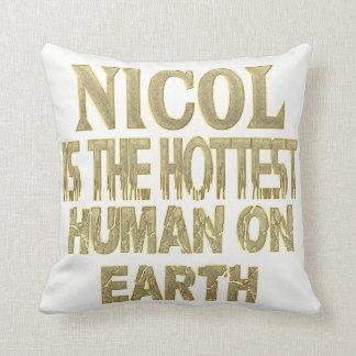 Nicol Pillow