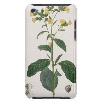 Nicotiana from 'Phytographie Medicale' by Joseph R Barely There iPod Cover