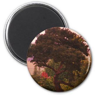 Nidderdale Tree acessories 6 Cm Round Magnet
