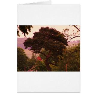 Nidderdale tree acessories greeting card