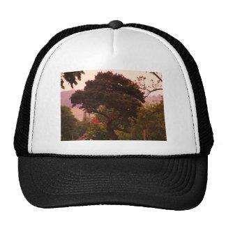 Nidderdale tree acessories trucker hats