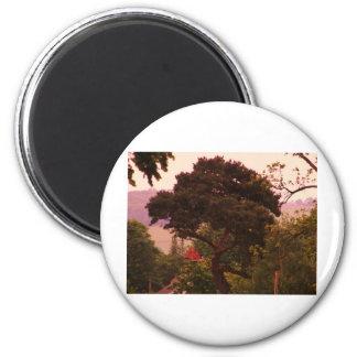 Nidderdale Tree acessories Magnets